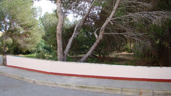 Property for sale - Plot for sale - Algorfa - Montemar