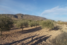 Plot for sale - Plot of land for sale - Caudete - Caudete
