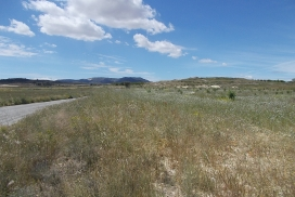 Plot for sale - Plot of land for sale - Pinoso - Pinoso