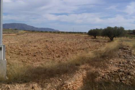 Plot for sale - Plot of land for sale - Jumilla - Jumilla