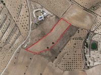 Plot of land for sale - Plot for sale - Jumilla