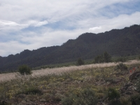Plot of land for sale - Plot for sale - Yecla